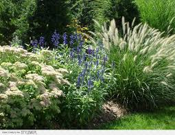 Small Picture 41 best Landscape Idea images on Pinterest Gardens Landscaping