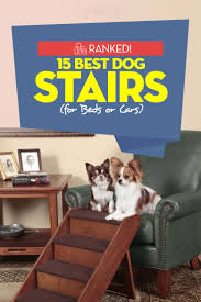 small dog furniture. Top Best Dog Stairs For Bed Or Car Small Furniture D
