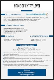 Cv Format Resume Samples Sample Resume Template Chronological