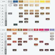 Redken Toner Color Chart Allurepaper Co