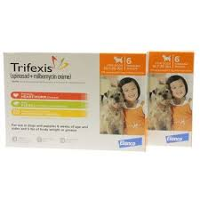 trifexis without vet prescription. Interesting Vet Trifexis Intended Without Vet Prescription 4