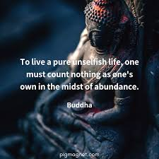 28 Practical Buddha Quotes Pig Magnet