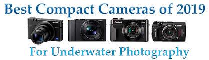 Canon Digital Slr Comparison Chart Compact Camera Comparison Chart Bluewater Photo