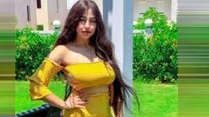 حبس ريناد عماد فتاة التيك توك 3 سنوات بتهمة بث فيديوهات خادشة للحياء