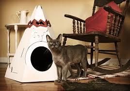cat tee house