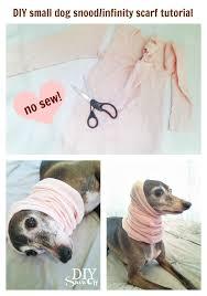 diy small dog snood infinity scarf tutorial no sew diyshowoff