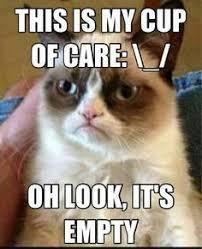 grumpy cat so beautiful. Exellent Beautiful I Wouldnu0027t Be Speaking Grumpy Cat U0027cuz You Aint So Beautiful Either Bro   Grumpy Cat Pinterest Cat Bro And Inside So Beautiful E