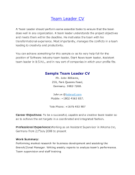 Warehouse Job Description For Resume Best Of Team Leader Resume ...