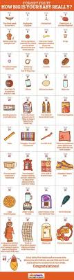 Pregnancy Baby Size Chart Week By Week 7 Best Baby Size By Week Images New Baby Products Baby