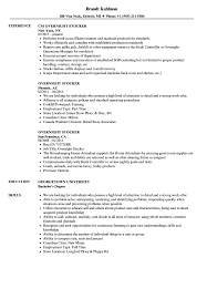 Download Overnight Stocker Resume Sample as Image file