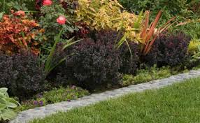 get to know your edging options