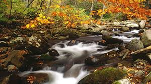 autumn mountains backgrounds. Smoky Mountains Autumn 303160 Backgrounds M