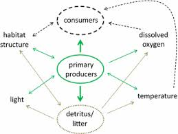 Producers And Consumers Venn Diagram Effects Of Long Term Nutrient Additions On Arctic Tundra