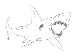 Small Picture Blue Shark Colouring Pages Gekimoe 114332