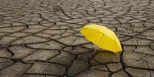 نقص الأمطار أم .. نقص الأفكار !