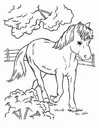 Help your child develop art skills with these horse coloring pages. Animal Horses Printable Coloring Page Kids Coloring Pages