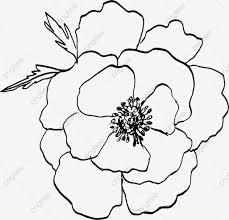 無料ダウンロードのための線画花 黒い ライン 線画植物png画像素材