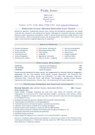 chef resume objective cipanewsletter cover letter executive chef resume sample executive chef resume