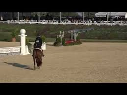 Morton's Kitty in Style 2019 Pony Finals - YouTube