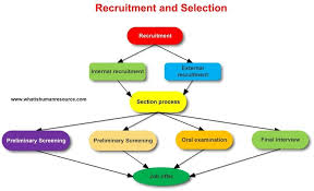 Human Resource Management What Is Hrm Definitions Functions
