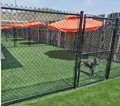 artificial grass for dog boarding facilities dog training facilities maybe synthetic turf for the training