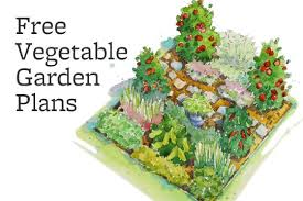 Small Picture Free Vegetable Garden Design Vegetable garden layout plans free