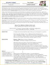 What Should A Professional Resume Look Like – Goodvibesbrew.com