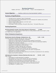 Accounting Resume Examples 2014 Lovely Business Resume Format Best