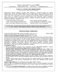 Example Of Professional Resume Berathen Com