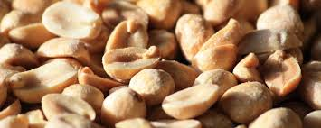A cure for peanut allergies in sight? - Science in the News