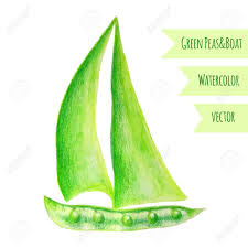 pea ship watercolor green peas hand drawn watercolor painting on white background vector