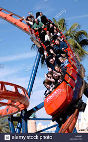 the scorpion rollercoaster at busch gardens tampa florida usa with thrill seekers aboard enjoying the ride