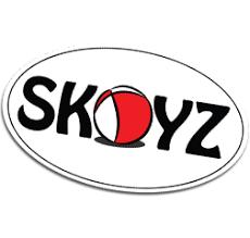 Image result for skoyz images