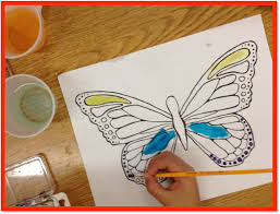 time kindergarten caterpillars to butterflies butterflies