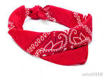 Images & Illustrations of bandanna