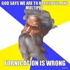 god-says-we-are-to-be-fruitful-and-multiply-fornication-is-wrong-thumb.jpg via Relatably.com