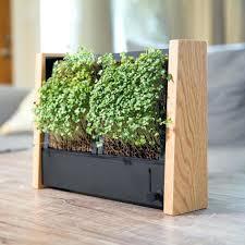 indoor kitchen garden. indoor vertical vegetable garden micro veggie diy . kitchen