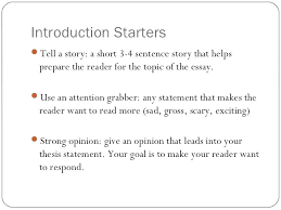 Introduction Of Essay Examples Introduction Of An Essay Example
