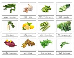 indian vegetables names in english with pictures. Perfect Indian Vegetables With Names Intended Indian In English With Pictures I