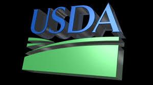 Perdue Names Anne Hazlett To Lead Rural Development At USDA  AgweekRural Development Usda