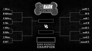 Bark Madness 2019 Sweet 16 Matchups Vote Now
