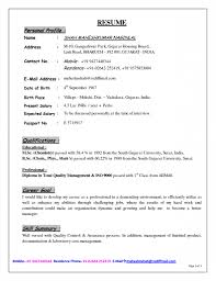 Resume Resume Personal Profile Examples Inspiration Example