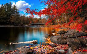 Autumn Panoramic Wallpapers - Top Free ...