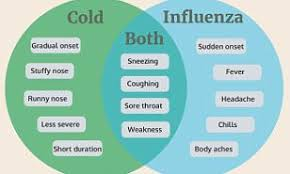 Cold Symptoms Vs Flu Symptoms Chart Are You Sure You Have The Flu Or Is It Just A Common Cold