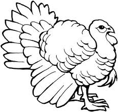 Small Picture Turkey Coloring Pages GetColoringPagescom