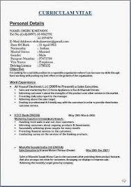 Personal Banker Job Description For Resume Unique Resume In English