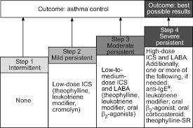 Examining The Unmet Need In Adults With Severe Asthma