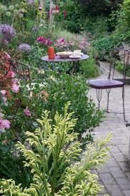 garden planting ideas for small gardens