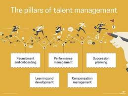 Talent Management System What Is Talent Management Software Tm Software Definition From