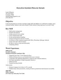 work skills resume objectives career examples of career objective skills format resume skills the best images collection for your resume job related skills resume skills